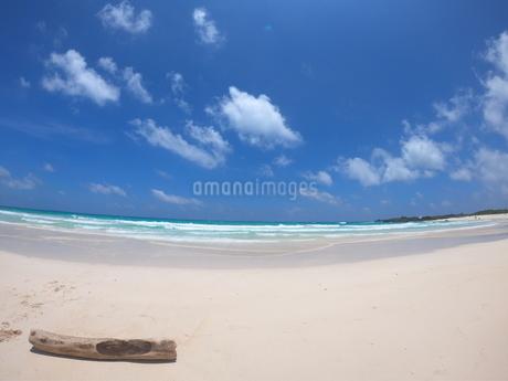 砂浜の写真素材 [FYI02976561]