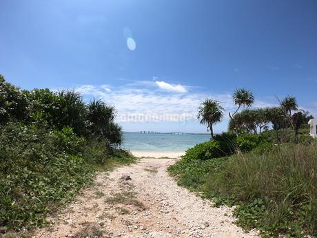 海への道の写真素材 [FYI02976569]