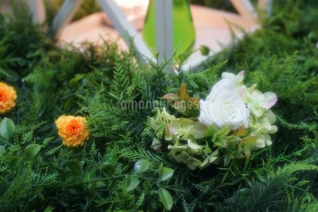 造花と庭のイメージの写真素材 [FYI02976633]