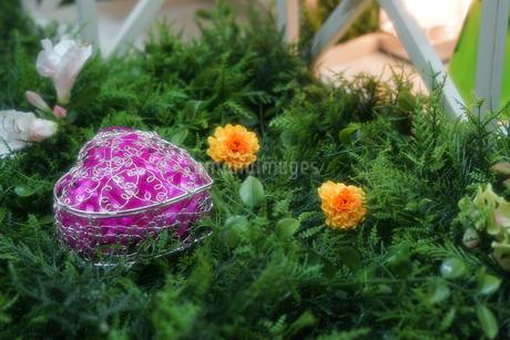 造花と庭のイメージの写真素材 [FYI02976634]
