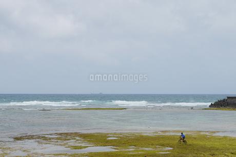 自転車で遠浅の海岸を走る少年の写真素材 [FYI02976694]
