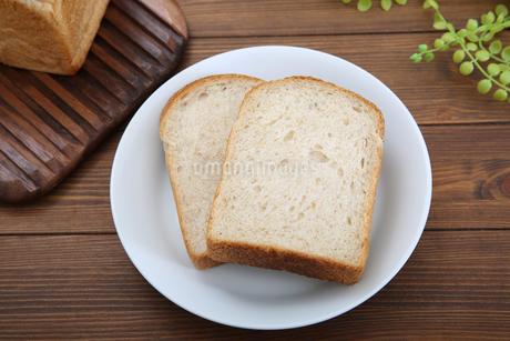 食パンの写真素材 [FYI02976717]