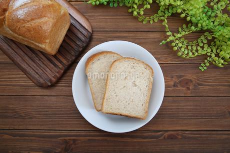 食パンの写真素材 [FYI02976719]