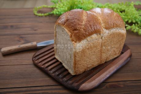 食パンの写真素材 [FYI02976728]