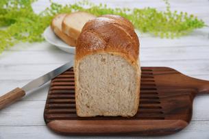 食パンの写真素材 [FYI02976750]