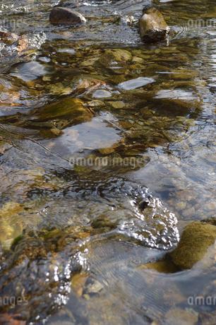 透明な水が流れいてる河原の写真素材 [FYI02976827]