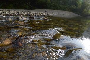 透明な水が流れいてる河原の写真素材 [FYI02976828]