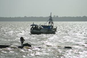 アマゾン河で水浴びする人と漁船の写真素材 [FYI02976864]