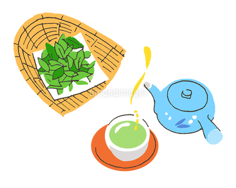 日本茶のイラスト素材 [FYI02976969]