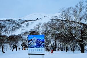 ニセコヒラフスキー場冬景色の写真素材 [FYI02977028]