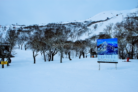 ニセコヒラフスキー場冬景色の写真素材 [FYI02977030]