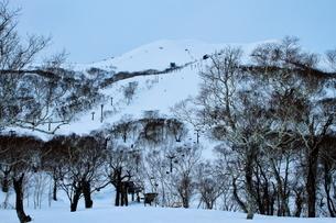 ニセコヒラフスキー場冬景色の写真素材 [FYI02977033]