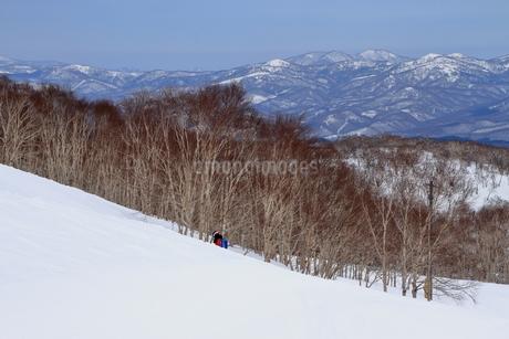 ニセコヒラフスキー場冬景色の写真素材 [FYI02977036]