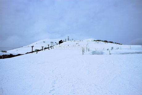 ニセコヒラフスキー場冬景色の写真素材 [FYI02977113]