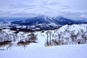 ニセコヒラフスキー場冬景色の写真素材 [FYI02977118]