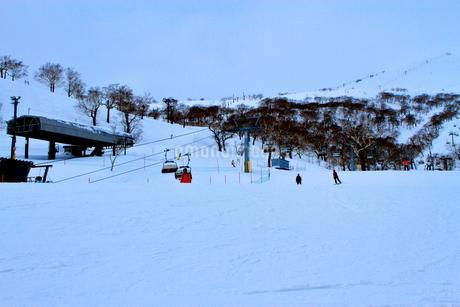 ニセコヒラフスキー場冬景色の写真素材 [FYI02977122]