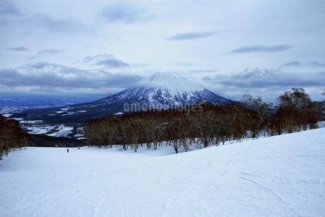 ニセコヒラフスキー場冬景色の写真素材 [FYI02977125]