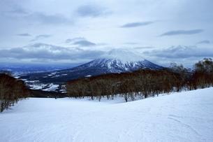 ニセコヒラフスキー場冬景色の写真素材 [FYI02977126]