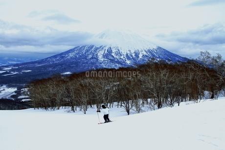ニセコヒラフスキー場冬景色の写真素材 [FYI02977133]