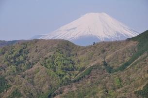 加入道山からの富士山の写真素材 [FYI02977280]