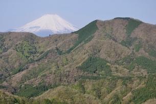 加入道山からの富士山の写真素材 [FYI02977281]