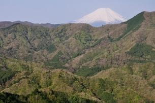 加入道山からの富士山の写真素材 [FYI02977284]