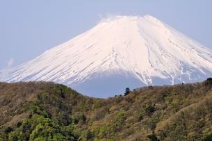 加入道山からの富士山の写真素材 [FYI02977288]