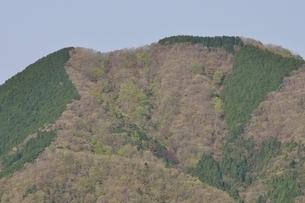 加入道山からの鳥ノ胸山の写真素材 [FYI02977290]