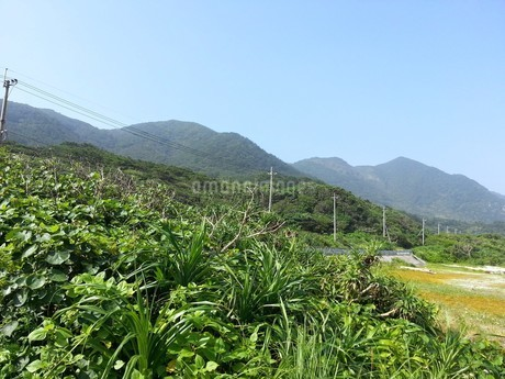 徳之島の風景2の写真素材 [FYI02977769]