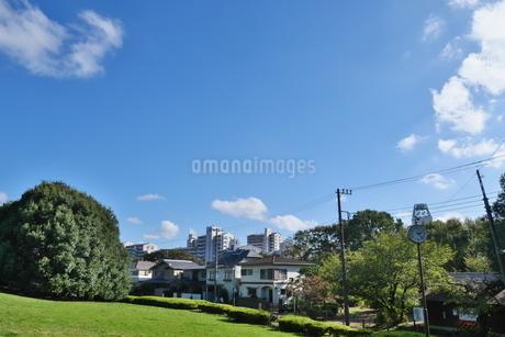 青空の下に広がる緑の住宅街の写真素材 [FYI02977889]