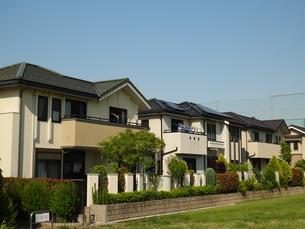 青空の下に広がる緑の多い住宅街の写真素材 [FYI02977918]