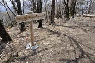 加入道山山頂の写真素材 [FYI02977962]