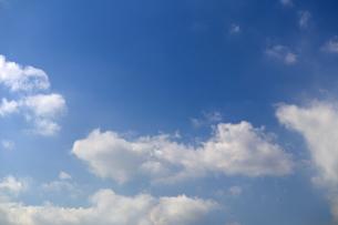 青空の写真素材 [FYI02978006]