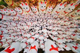 豪徳寺 猫寺 湧き出るの写真素材 [FYI02978053]
