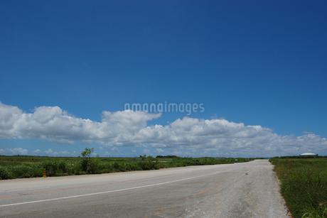 晴天の空と奥に続く直線道路の写真素材 [FYI02978058]