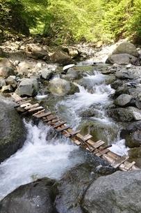 渓流に架かる橋の写真素材 [FYI02978141]
