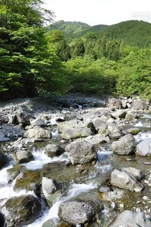 早戸川より丹沢の白馬尾根の写真素材 [FYI02978149]