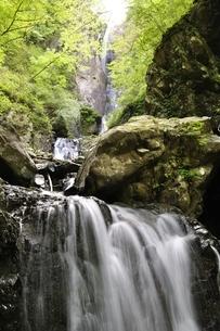 新緑の早戸大滝の写真素材 [FYI02978159]