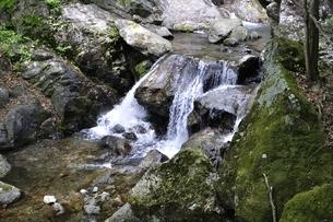 大岩の滝の写真素材 [FYI02978178]