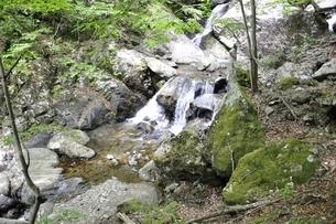 大岩の滝の写真素材 [FYI02978180]