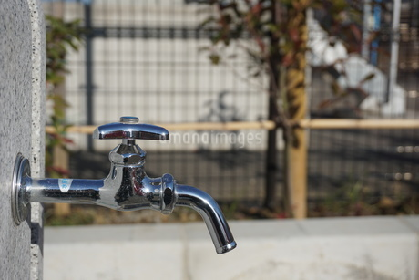 水道の蛇口の写真素材 [FYI02978450]