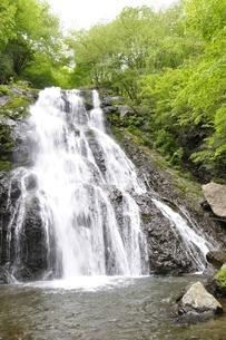 丹沢山地 雷滝の写真素材 [FYI02978520]