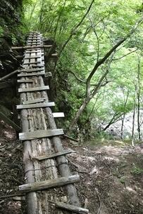 山道に架かる古い橋の写真素材 [FYI02978561]