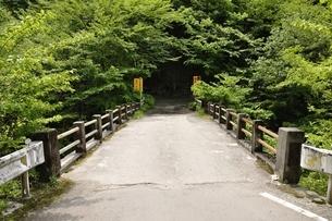林道に架かる古い橋 魚止橋の写真素材 [FYI02978568]