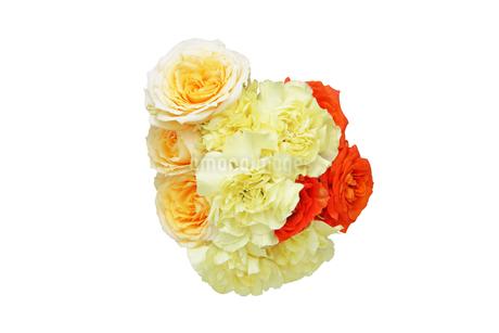 薔薇とカーネーションの花束の写真素材 [FYI02978826]