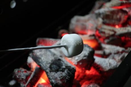 バーベキューコンロの炭火で炙られるマシュマロの写真素材 [FYI02978867]