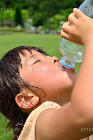 水を飲む小学生の女の子の写真素材 [FYI02979014]