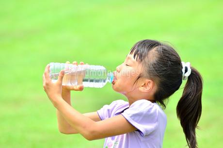 水を飲む小学生の女の子の写真素材 [FYI02979019]