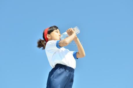 水を飲む小学生の女の子(運動会、体操服)の写真素材 [FYI02979040]