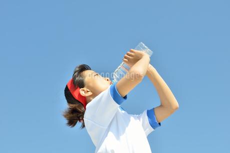 水を飲む小学生の女の子(運動会、体操服)の写真素材 [FYI02979041]